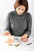 Woman counting the savings — Stock Photo