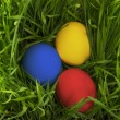 Easter eggs in the grass. — Stock Photo #23040832