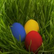 Easter eggs in the grass. — Stock Photo