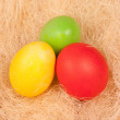图库照片: Bright background of colorful eggs