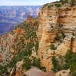 Paths of grand canyon 4 — Stock Photo #13550881