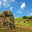 Bales of hay - Val Pusteria, Dolomite - Italy — Stock Photo