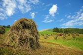 イタリア - ・ ヴァル ・ プステリア、ドロマイト - 干し草の俵 — ストック写真