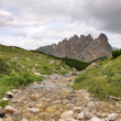 Beautiful landscape with small brook - Dolomites, Italy — Stock Photo #14182468