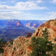 Grand Canyon National Park (South Rim), Arizona USA - View 6 — Stock Photo #17433007