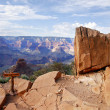 Grand Canyon National Park (South Rim), Arizona USA - View 5 — Stock Photo #17433249