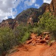 Zion National Park - USA — Stock Photo #17438107