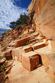 Grand Canyon National Park (South Rim), Arizona USA - View 3 — Stock Photo