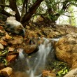 Small Water Cascades — Stock Photo #17441741