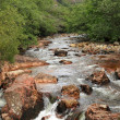 Mountain stream in spring - Scotland — Stock Photo