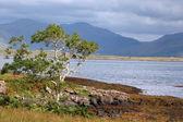 Isle of Mull - Landscape — Stock Photo