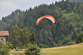 Paragliding — Photo