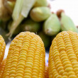 Yellow corn cobs — Stock Photo