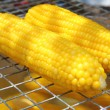 Corn boil — Stock Photo