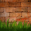 Brick wall with green grass foreground — ストック写真