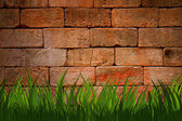 Brick wall with green grass foreground — Stock Photo