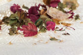Dry flower background — Stock Photo