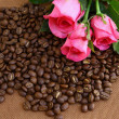 Coffee beans and pink rose — Stock Photo