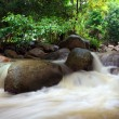 Tropical waterfall rain forest — Stock Photo