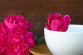 Red rose in white coffee cup — Stockfoto