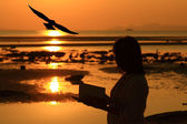 Silhouette woman reading book by beach at sunrise — Fotografia Stock
