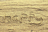 Happy text wrote  on beach sand — 图库照片