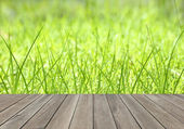 Grass and wooden floor — Stockfoto
