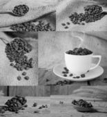 Roasted coffee beans collection — Stock Photo