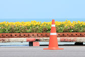 Traffic cone on road with flower and seascape background — Stock Photo