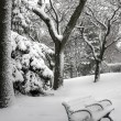 Winter scene — Stock Photo #14557125