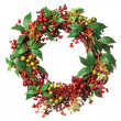 Christmas weath - Stock Photo