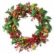 Christmas weath — Stock Photo