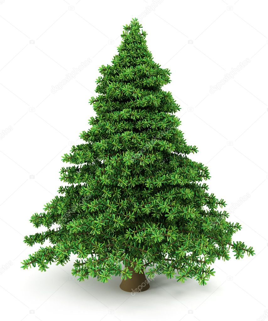 Christmas Tree — Stock Photo #14612615