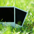 Blank photos in grass — Stock Photo