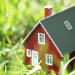Tiny red house in green grass — Stock Photo #32621403