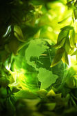 Glass globe in leaves — Stock Photo