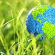 Earth in grass — Stock Photo