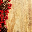 Berries and pine cones — Stock Photo