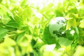Globo de cristal en hojas — Foto de Stock