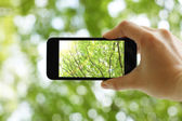 Taking a picture with a smart phone — Stock Photo