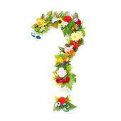 Question mark made of leaves and flowers — Stockfoto