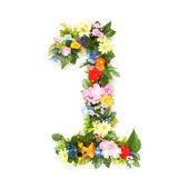 Numbers made of leaves and flowers — Foto de Stock