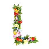 Letters made of leaves and flowers — Stock Photo