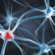 Neurons in the brain — Stock Photo #51358039