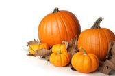 Pumpkins on leaves — Stock Photo