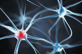 Neurons in the brain — Stock Photo