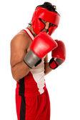 Pejsek boxer — Stock fotografie