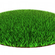 Green grass disc shape — Stock Photo