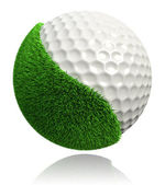 Golf ball with green grass — Stock Photo