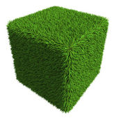 Green grass cube isolated on white background — Stock Photo